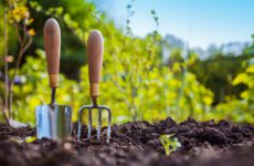 Gardening Tools You Should Know About