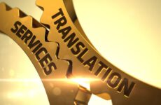 What are document translation and its importance?